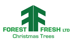 Forest Fresh Christmas Trees